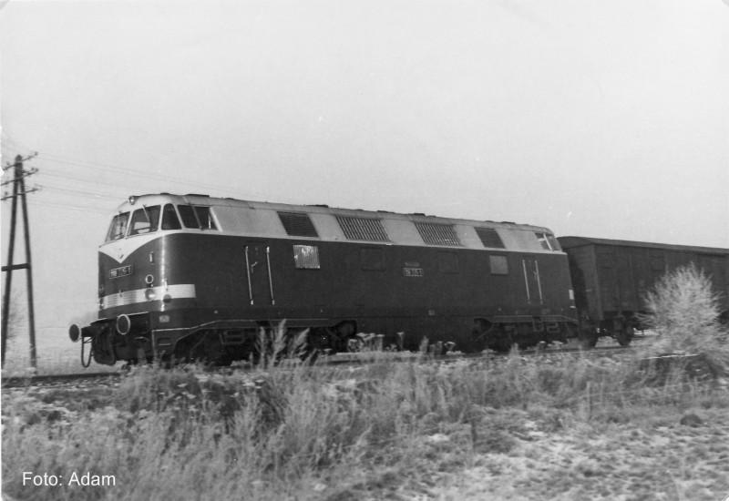 118 725-1 Bw Zittau bei Eibau mit E 981 11.1987 Kopie