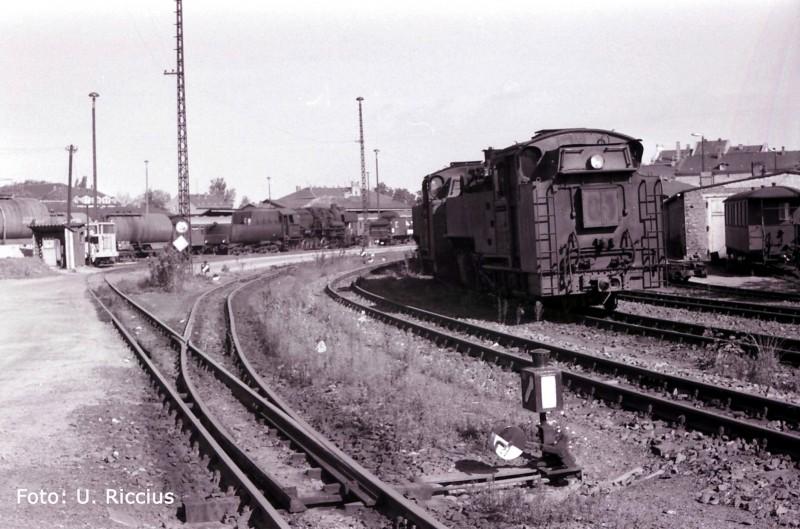 BwZittau1985 Kopie